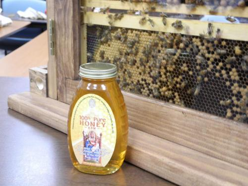036 Our honey in bottle & bees